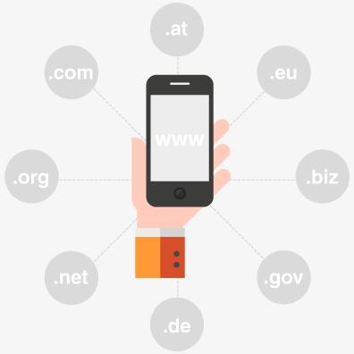 Domainregistrierung bei P.I.C.S.
