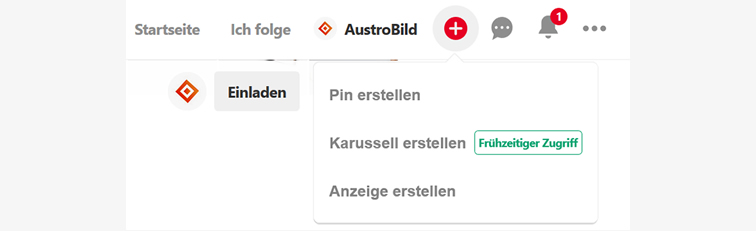 Screenshot-Pinterest-Account-AustroBild-Karussell-Pin