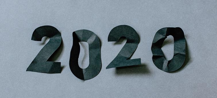 P.I.C.S. Blog - Jahresrückblick 2020